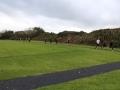 running-track (2)