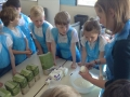 y4-pastymaking-2018 (2)